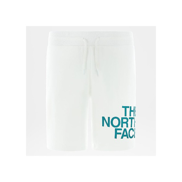 THE NORTH FACE M SS GRAPHIC SHORT TNF WHITE/FANFARE GREEN NF0A492CP7U1